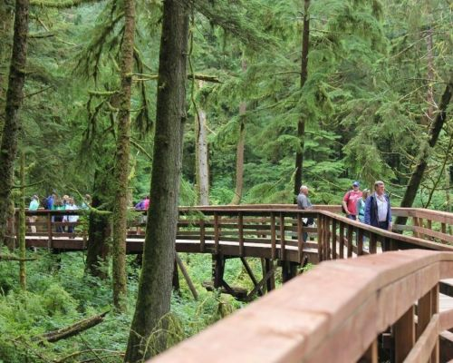 Rainforest Sanctuary, Totem Park & Eagles
