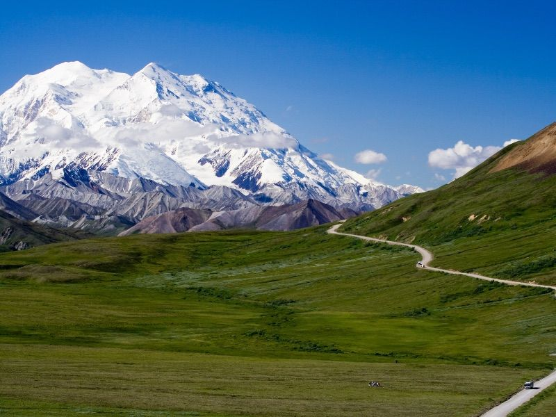 What To Do In Denali National Park And Preserve