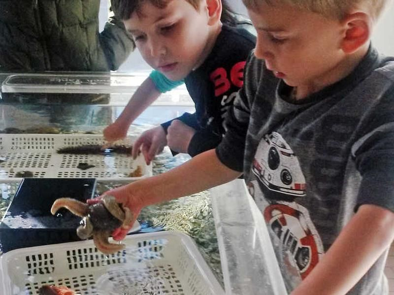 Kids-learning-about-salmon-and-the-ocean-at-DIPAC-salmon-hatchery-Juneau-Alaska.jpg