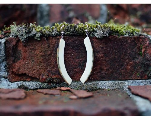 Ivory Jacks Fossilized Woolly Mammoth Ivory Natural Tusk Earrings