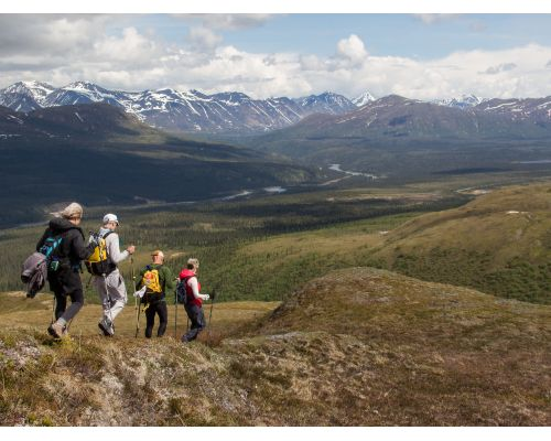Denali Privately Guided Hiking Adventure