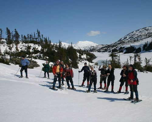 Laughton Glacier Snowshoe Hike & White Pass Railway Adventure