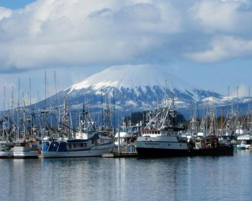 Premium Sitka Scenic Tour With Private 11-Passenger Van