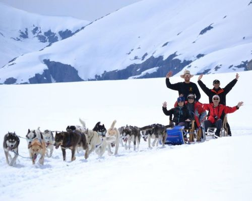 Dogsledding And Glacier Flightseeing