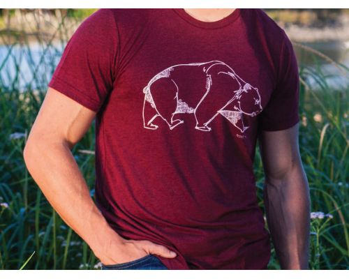 Bear Short Sleeved Tee